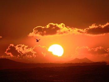 11.3:350:263:250:188:Sunrise:center:1:1::1: