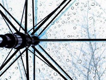 40.4:350:263:250:188:Rain:center:1:1::1: