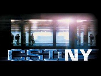 14.9:350:263:250:188:CSI-NY:center:1:1::1: