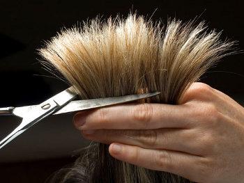 24.8:350:263:250:188:HairCut:center:1:1::1: