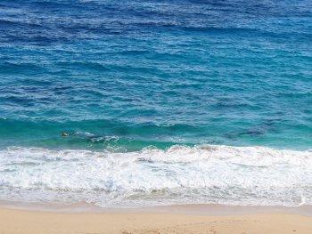 24.7:350:263:250:188:Ocean:center:1:1::1: