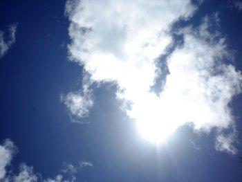 11.6:350:263:250:188:Sunny:center:1:1::1: