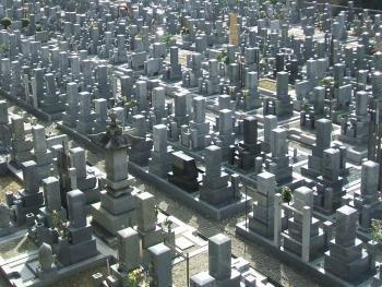 31.4:350:263:250:188:Cemetery:center:1:1::1: