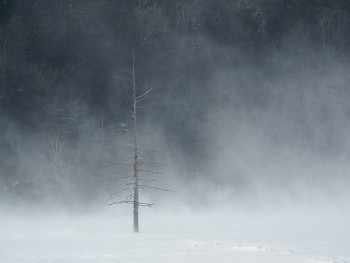 13.2:350:263:250:188:Snowstorm:center:1:1::1: