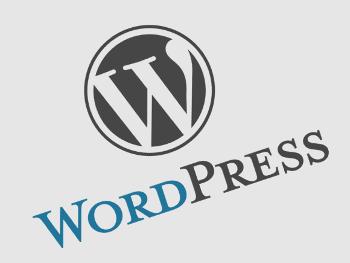 29.3:350:263:250:188:WordPress:center:1:1::1:
