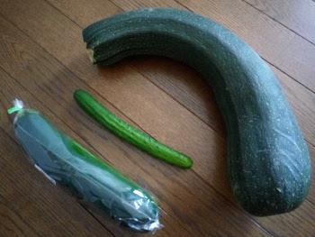 39.8:350:263:250:188:Zucchini:center:1:1::1: